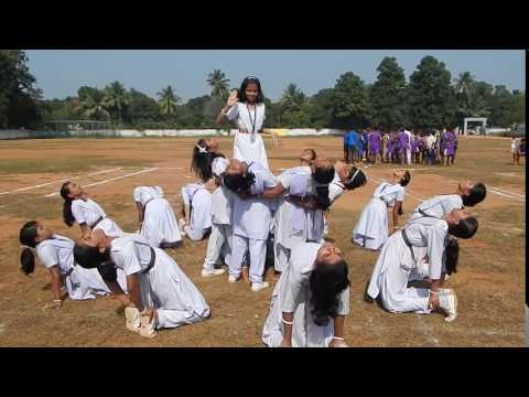 Sports  Hindu Spiritual Service Fair 4