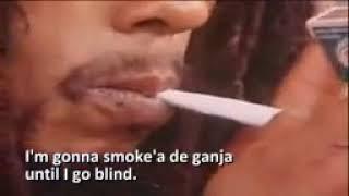 Download Mp3 Ganja Gun..bob Marley