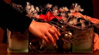 Dekorationsideen für den Fachhandel: moderne Arrangements mit Weihnachtssternen