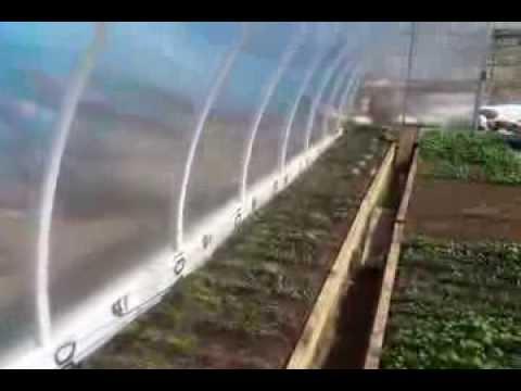 видео: самодельные дуги   теплица 3