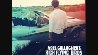 02-Noel Gallagher's High Flying Birds-Dream On FULL TRACK!