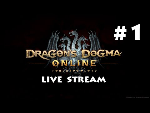 Dragon's Dogma Online - Day 1 of Journey  ・ DDON 冒険日記一日目