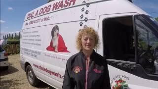 Dial a  Dog Wash, Pat Foggett, Wisbech & Kings Lynn area
