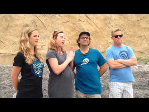 Surfrider San Diego: Lynch vs. California Coastal Commission