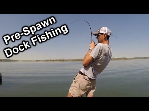 Pre-Spawn Dock Fishing On Lake Allatoona