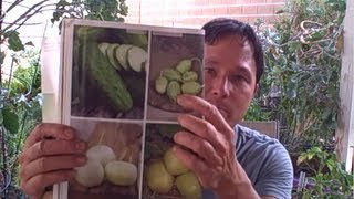 The Shocking Truth about Hybrid Foods and the Raw Food Diet