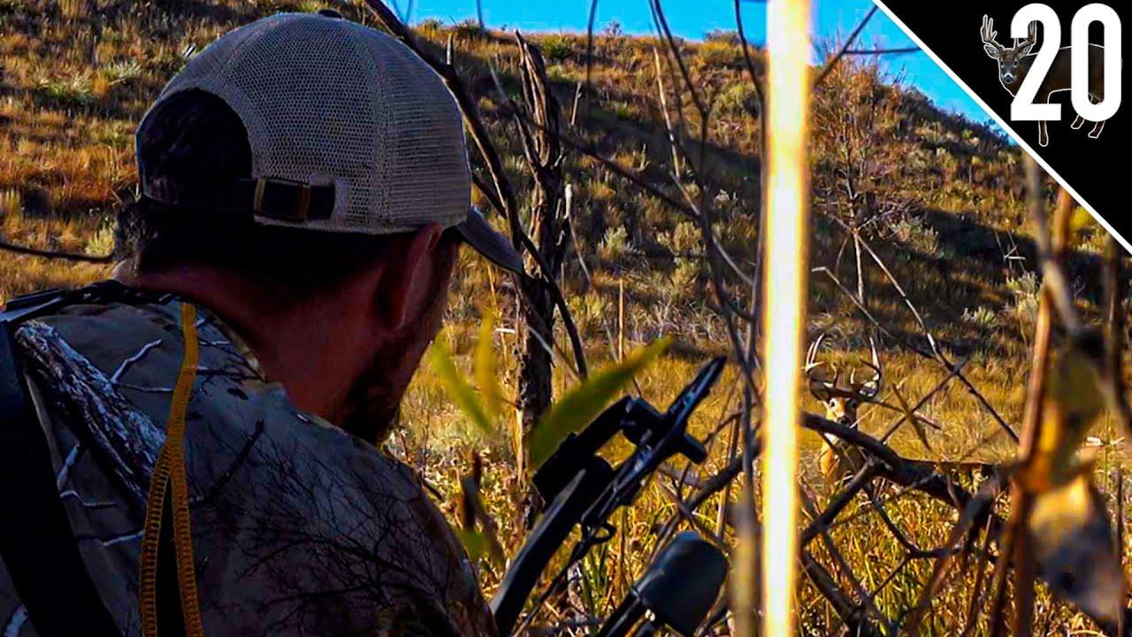 Download 15 Yards From Bedded Buck! South Dakota Public Land