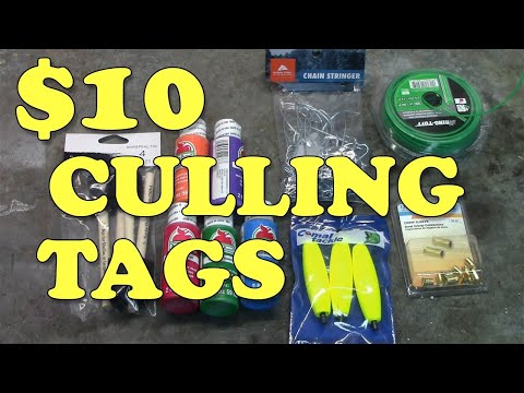 How To Make Fishing Tournament Culling Tags For UNDER $10!