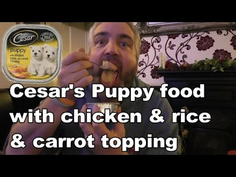 Eating Dog Food! Cesar's Puppy Food Chicken & Rice Review