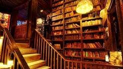 10+ Home Library Design Ideas