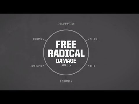Antioxidants Fight Free Radical Damage