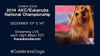 This Video Previously Contained A Copyrighted Audio Track. Due To A Claim By A Copyright Holder, The Audio Track Has Been Muted.     Akc/eukanuba National Championship Day 2