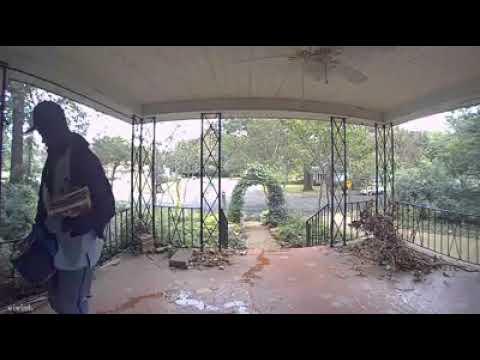 Otis - Mailman Pees On People's Porch