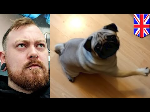 YouTuber Count Dankula fined for being 'grossly offensive' - TomoNews