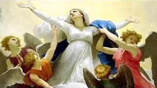 LA ASUNCIÓN DE LA VIRGEN MARÍA AL CIELO: 15 de AGOSTO