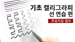 [캘리그라피 강좌] 1000원으로 캘리 배우기! - 선…
