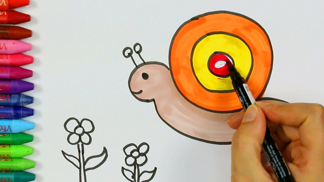 Wie Zeichnet Schnecke Mit Blumen Zeichnen Und Ausmalen Für Kinder