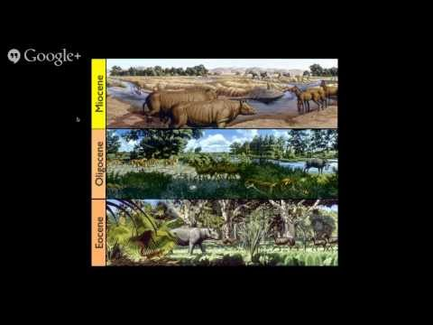 phyloseminar #34: Graham Slater, National Museum of Natural History