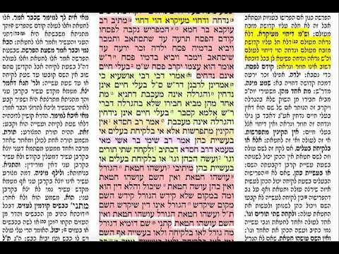 הדף היומי מסכת כריתות דף כח Daf yomi Kereisos daf 28 שמואל נבון Shmuel Navon