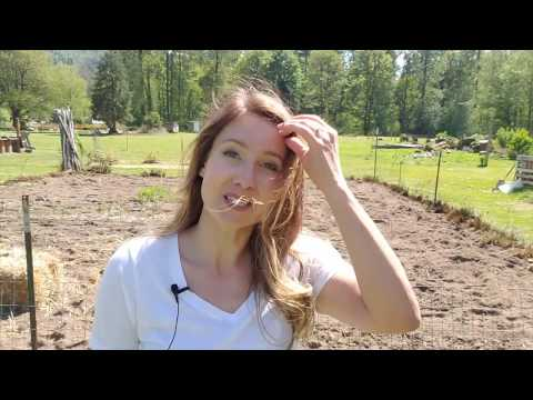 Kill Weeds Naturally with Weed Burner [NO chemicals – not even natural ones]
