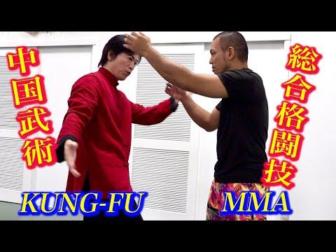 中国武術は総合格闘技で使えるのか?【宮平保】Kung-fu Master meets MMA Fighter