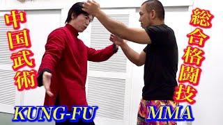 中国武術は総合格闘技で使えるのか?【宮平保と格闘家】Kung-fu Master meets MMA Fighter
