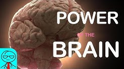 How Powerful is the Human Brain?