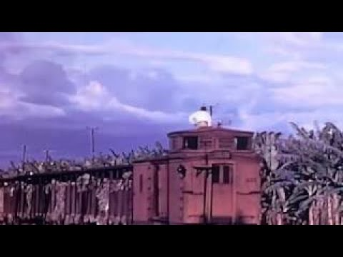 Agriculture and Food Production in the 1950 ~ Classic Documentary