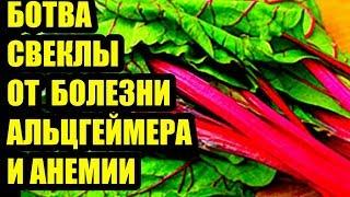 Свекольные листья для борьбы с болезнью Альцгеймера и анемией  # топ5хайп
