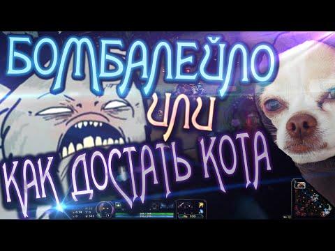 видео: Упоротая Катка #8 [умирающая чиХУаХУа + кот бомбит]