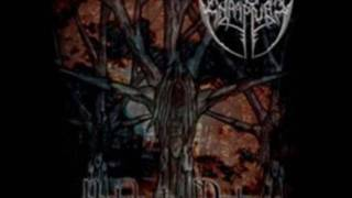 Enrapture - Immortal Hate