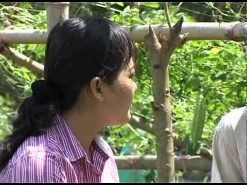 CLTB.Số 36, Hoàn cảnh nông dân Nguyễn Công Thành, Thoại Sơn, An Giang