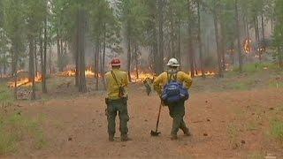 USA: Waldbrände in Washington und Kalifornien
