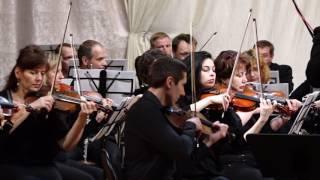 Брянский губернаторский симфонический оркестр (Трубчевск 2017)