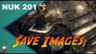 NUKE 201 -  Saving Image Proje…