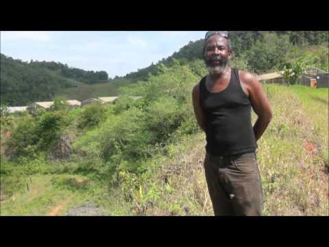 St. Ann, Jamaica, solar water pumpinng projects by Sun Source Technology