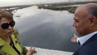 شاهد.. محافظ الإسكندرية بالإنابة تتابع أزمة الأسماك النافقة في بحيرة مريوط