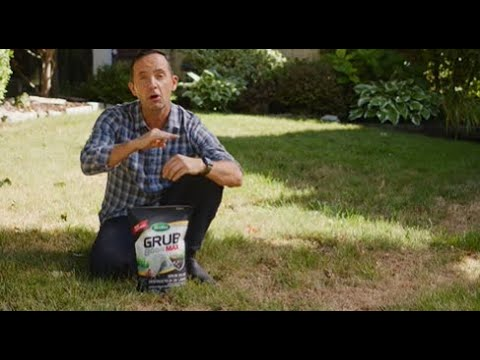 Download How To Get Rid of Grubs with Scotts® Grub B Gon MAX® Grub Killer