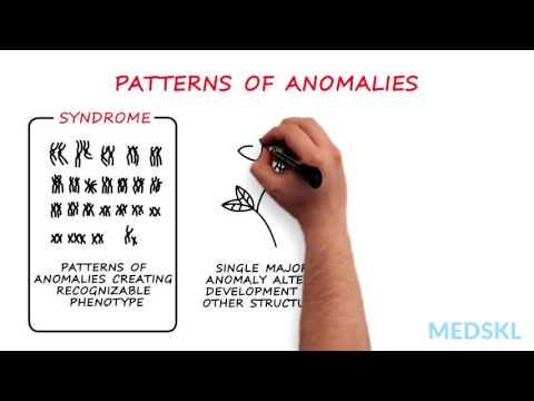 Pediatrics – Congenital Anomalies: By Daryl Scott M.D.