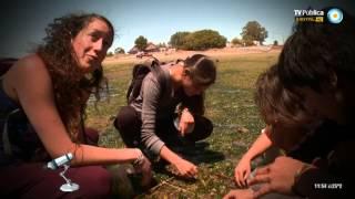 Científicos Industria Argentina - Biología Marina en Río Negro - 29-03-14