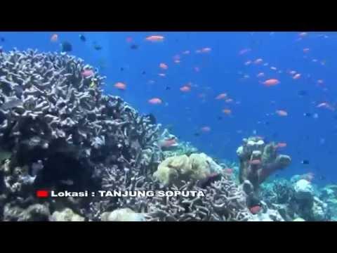 Surga bawah Laut (underwater paradise ) Bolsel, Sulut, Indonesia
