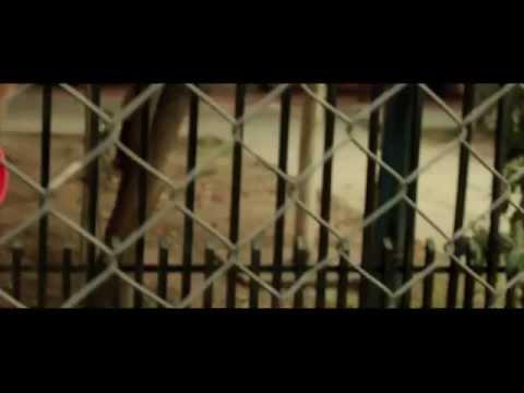 Bascur - Querida Maldita - (Video Oficial)