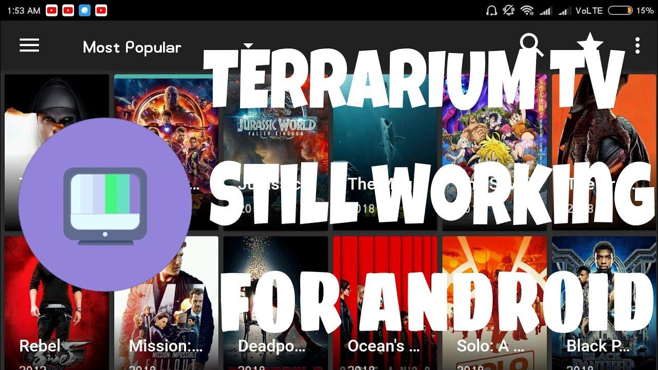 Terrarium tv patched