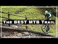 The BEST MTB trail (Brixen MTB 2017 / Bachweg)
