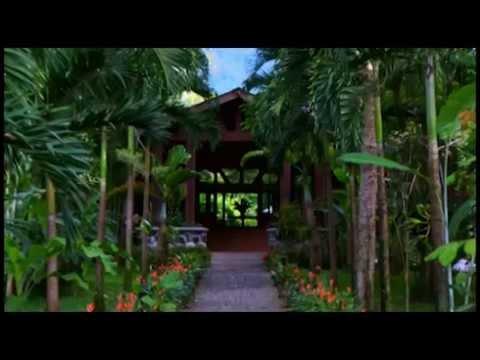 La Ceiba - IHT - Todo está aquí