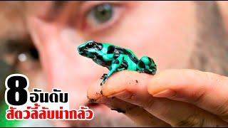8 สัตว์ลี้ลับ แห่งแม่น้ำอเมซอนที่คุณเห็นแล้วต้องรีบจัดการ!!