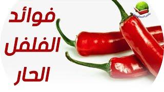 Gambar cover فوائد الفلفل الأحمر   لماذا ينصح خبراء التغذية والأطباء بتناوله؟