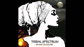 Tribal Spectrum- Chaahat (Silsila Ye Chaahat Ka Remix)