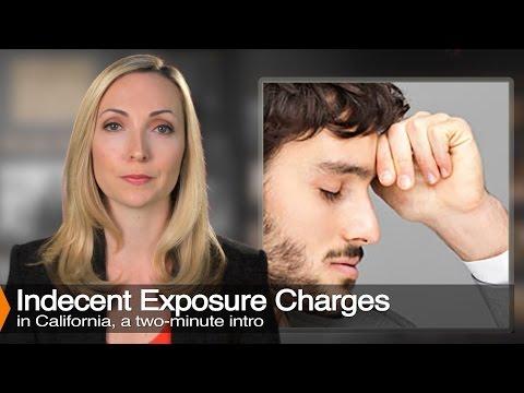 Indecent Exposure Laws   Penal Code 314