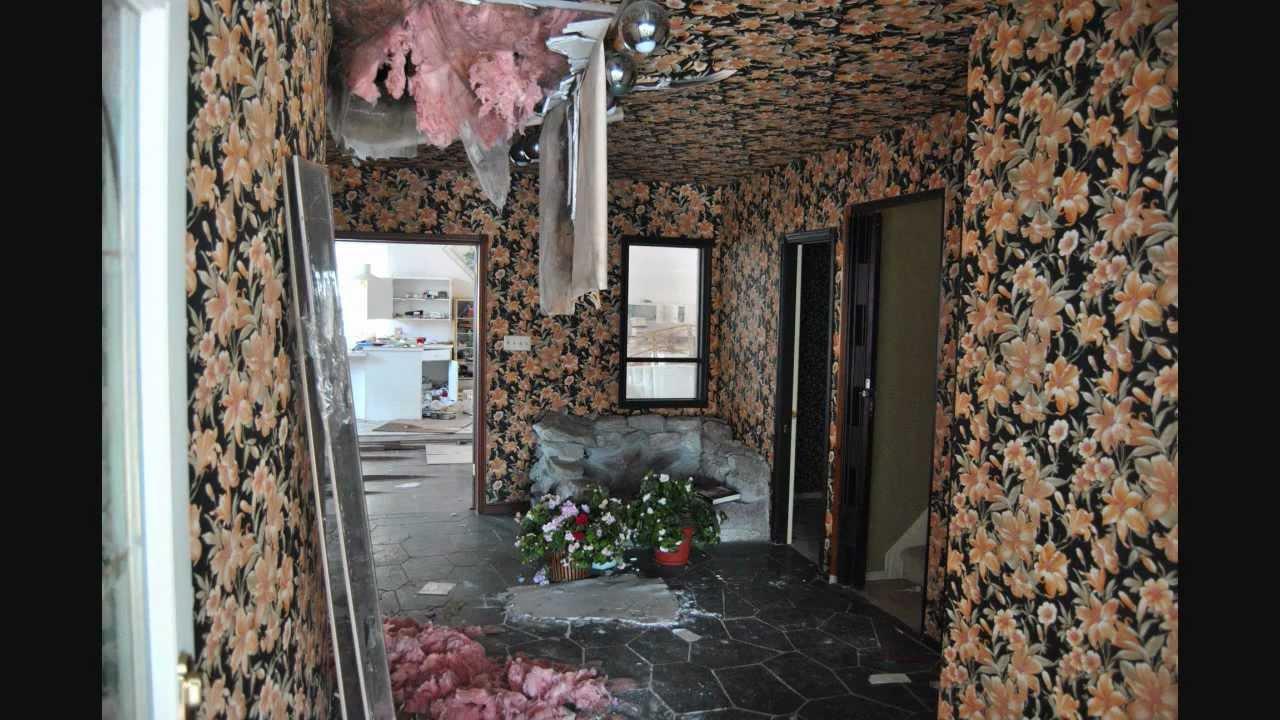 Exploring Abandoned Cat Lady House Youtube